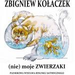 Kołaczek_Sosnowiec_PLAKAT